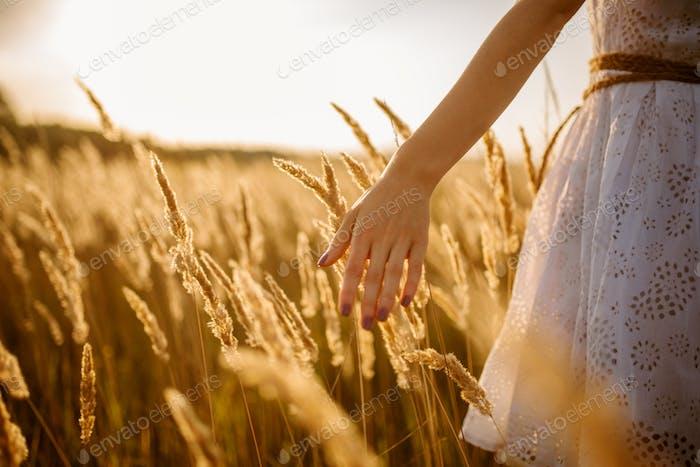 Weibliche Person zu Fuß in einem Roggenfeld auf Sonnenuntergang
