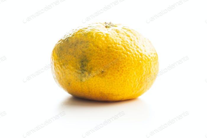 Fresh yellow tangerines.