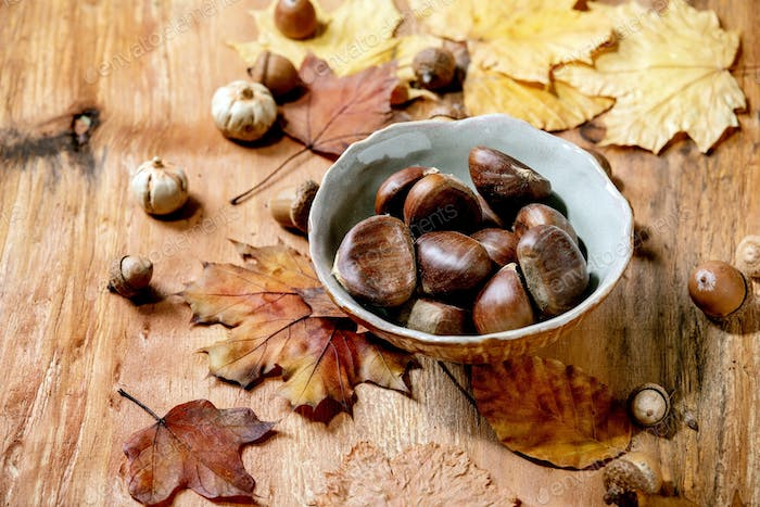 Edible chestnuts and autumn leaves