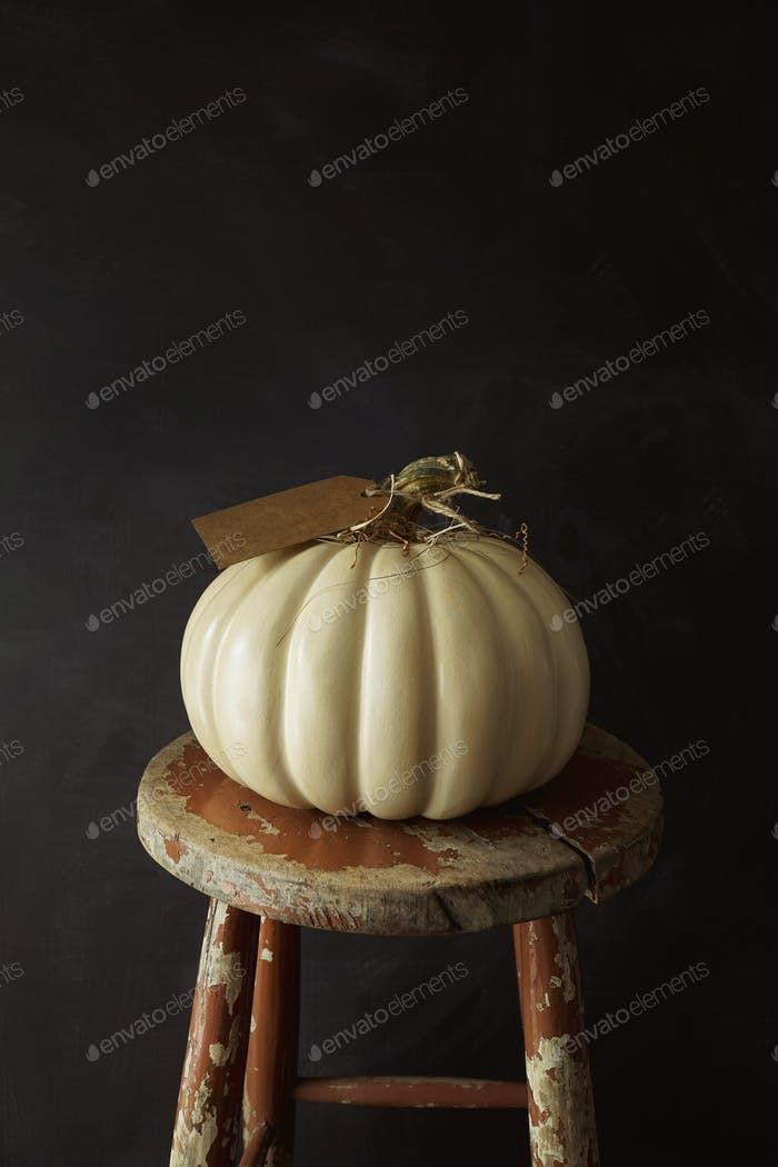 White pumpkin on old stool