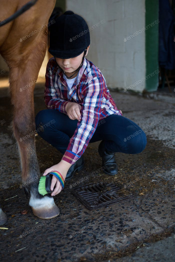 Girl grooming the horse