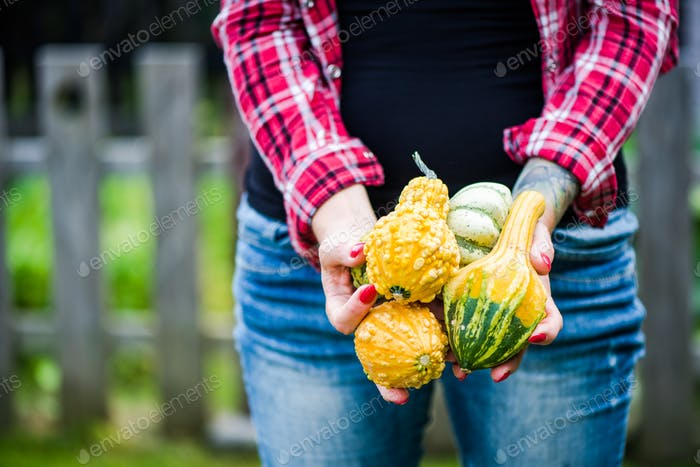 Millennials girl holding pumpkins in garden