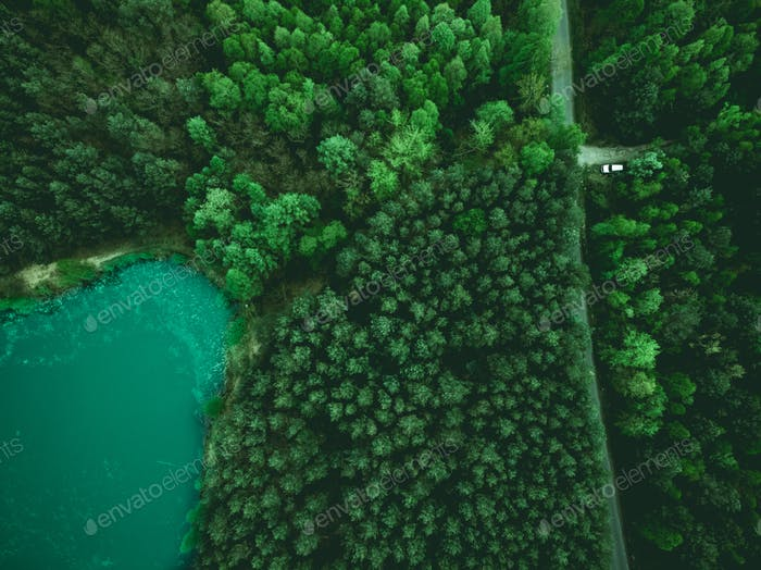 Aerial view on forest and car parked on road