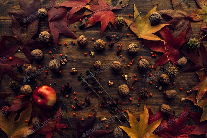 Autumn leaves and fruit