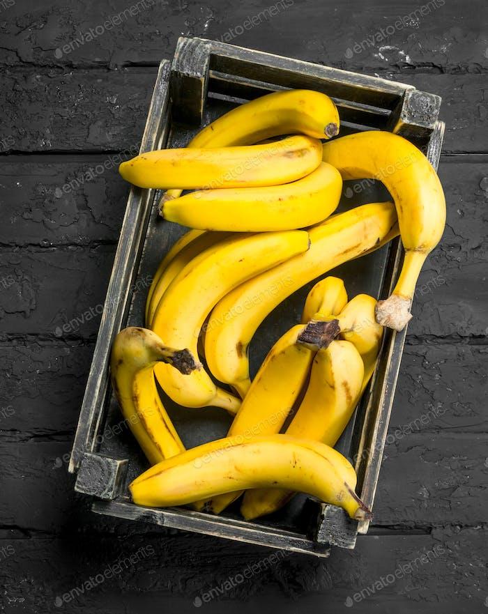 Бананы в черном ящике.