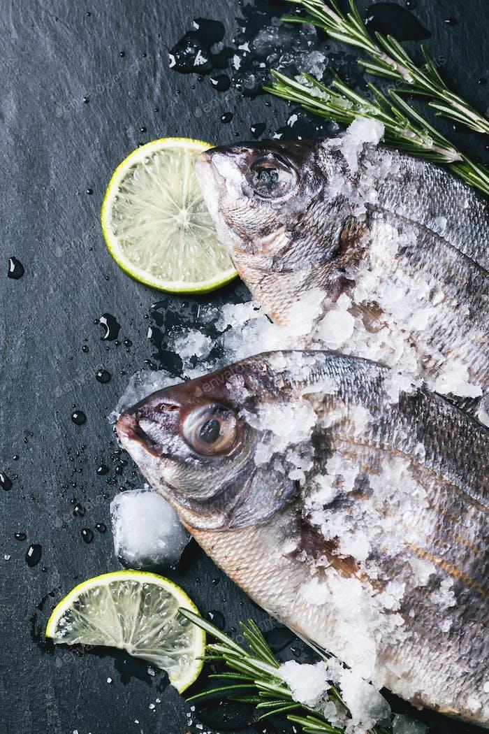 Tow raw dorado fish with rosemary over black