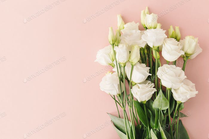 Bouquet of white roses on pink