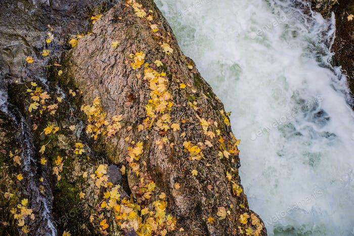 Fall Foliage River