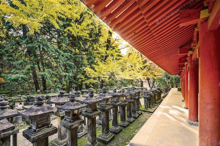 Japanese Stone Lanterns