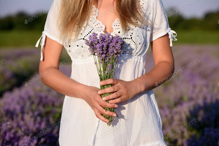 Beautiful young woman, holding lavender in lavender field