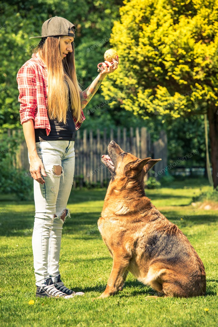 Attractive young woman and german shepherd dog