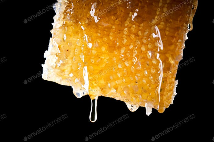Close Up Of Honey Dripping From Honeycomb Against Black Background