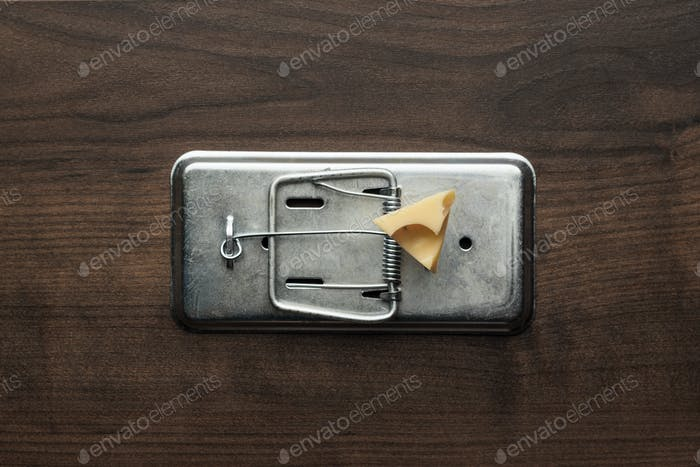 Piece Of Cheese In Mousetrap