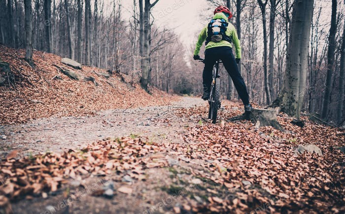 Mountainbiken auf Trail im Herbstwald