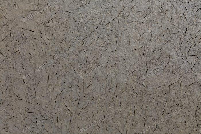 texture on land