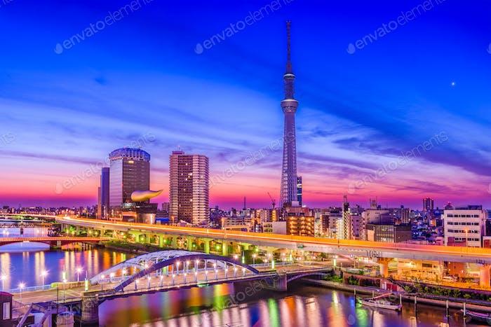 Tokio, Japan City Skyline