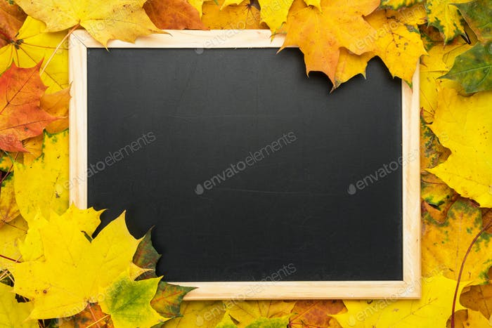 Tafel und Blätter