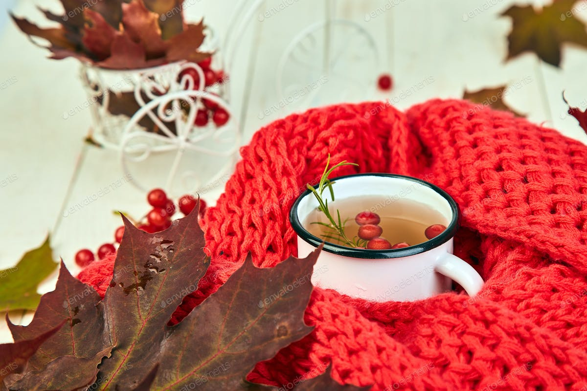 Mug Of Hot Viburnum Tea With Red Warm Knitted Scarf Photo By Bondarillia On Envato Elements