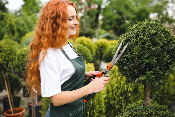 Beautiful smiling lady with redhead curly hair standing in apron and holding big garden scissors