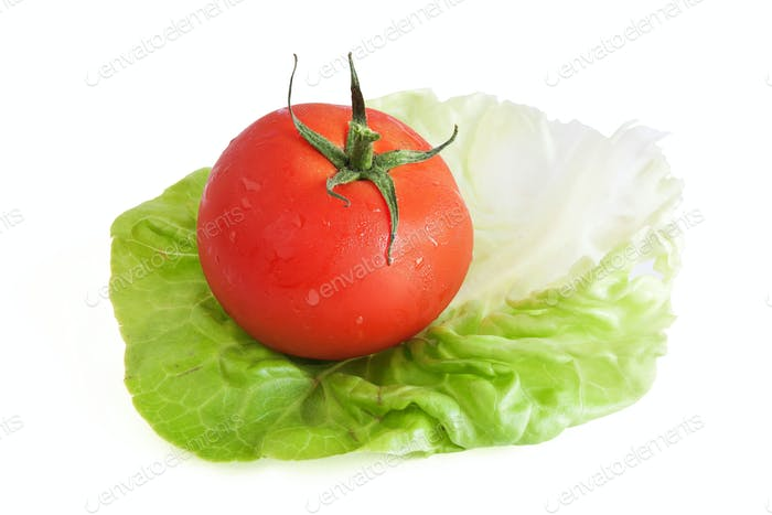 tomato and lettuce