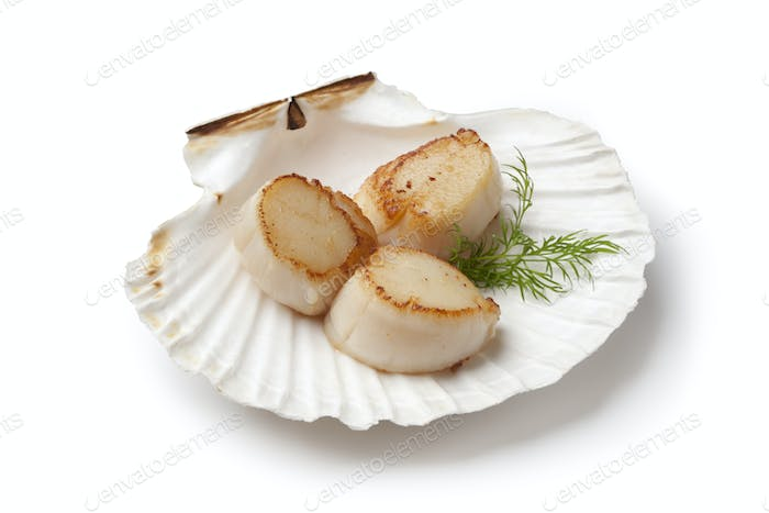 Seared scallops served in a shell with dill