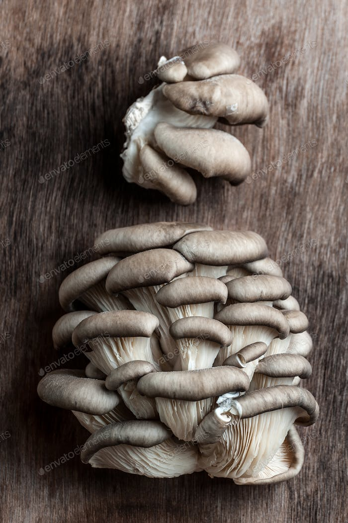 Fresh Oyster mushrooms on an old wooden background.