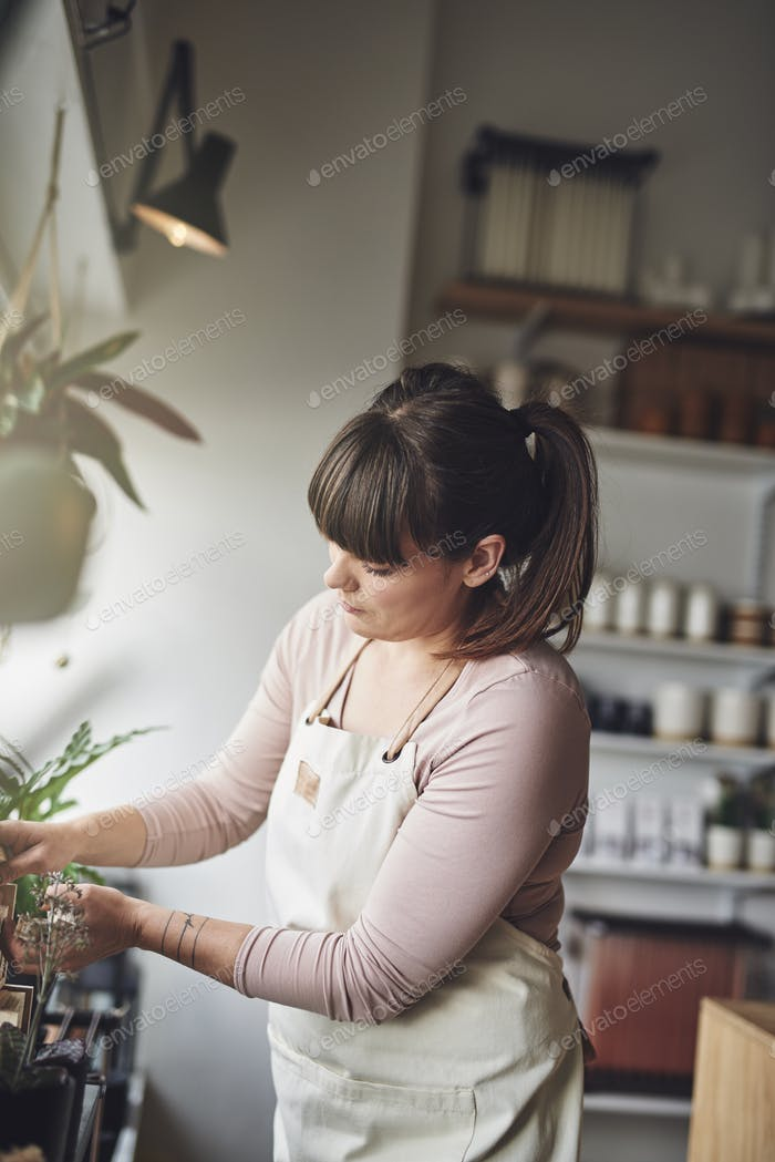 Young florist arranging a window display in her flower shop