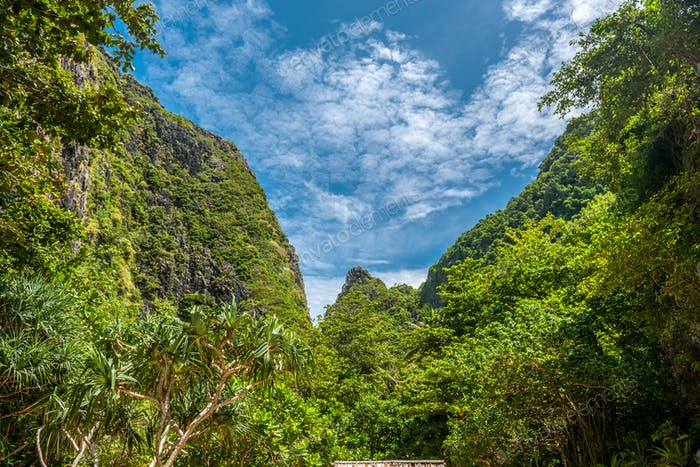 Schöne tropische Natur auf Phi Phi Ley Insel