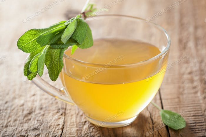 healthy herbal sage tea with green leaf in glass cup