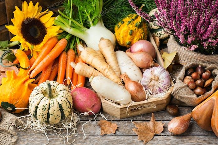 Surtido o mercado de agricultores bio biológico biológico de raíz madura