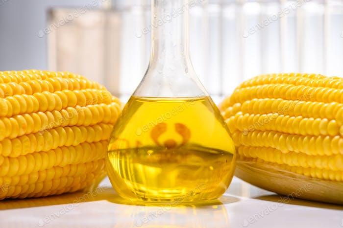Biofuel or Corn Syrup, gasoline, energy, environmentalist