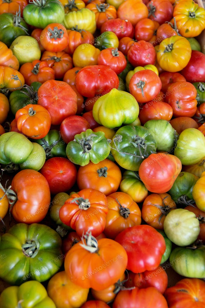 Pachino red tomatoes on a farmers market