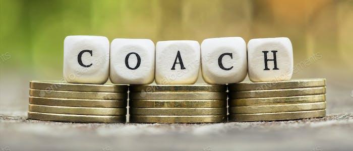 Business life coaching concept, web banner idea
