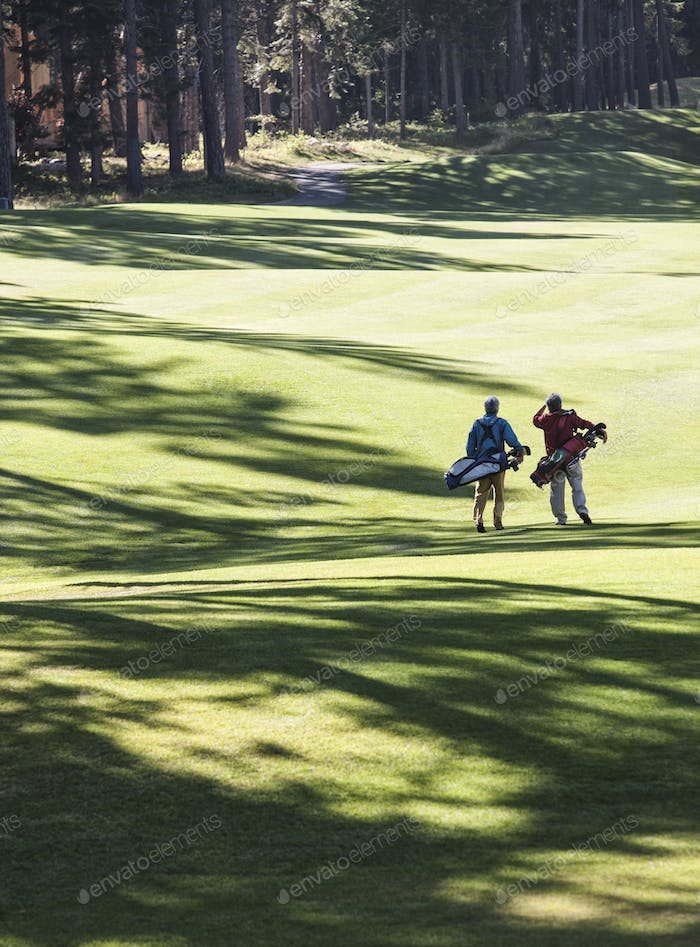 Two golfers surveying the next shot on the fairway.