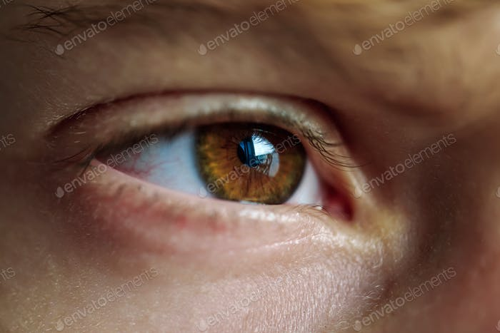 Brown eye of person with reflection