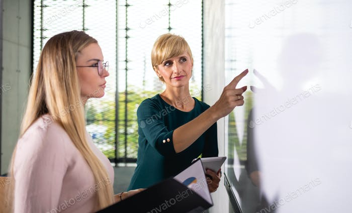 Two business woman showing empty white board gives presentation at conference room