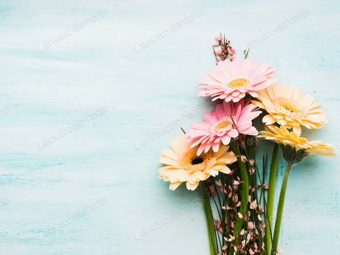 Beautiful flowers on pastel green background