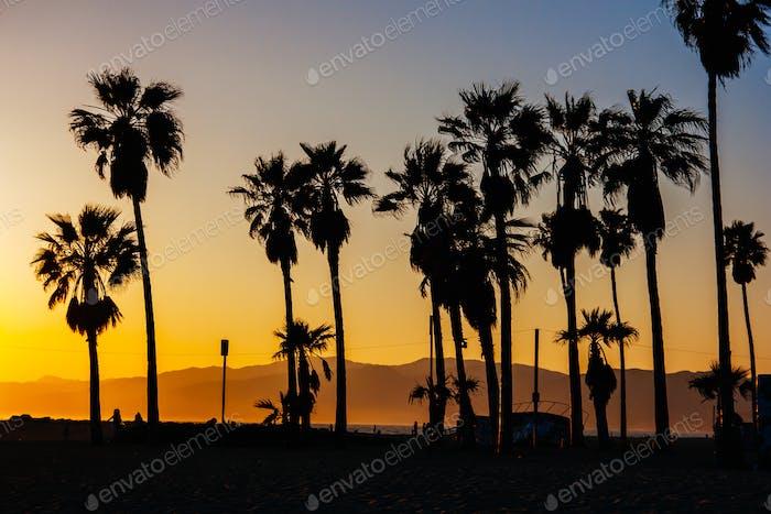 Venice Beach Sonnenuntergang