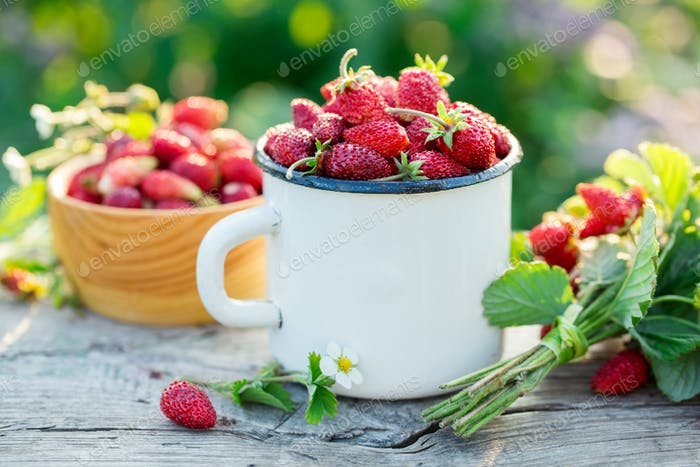 Wild strawberry in a mug