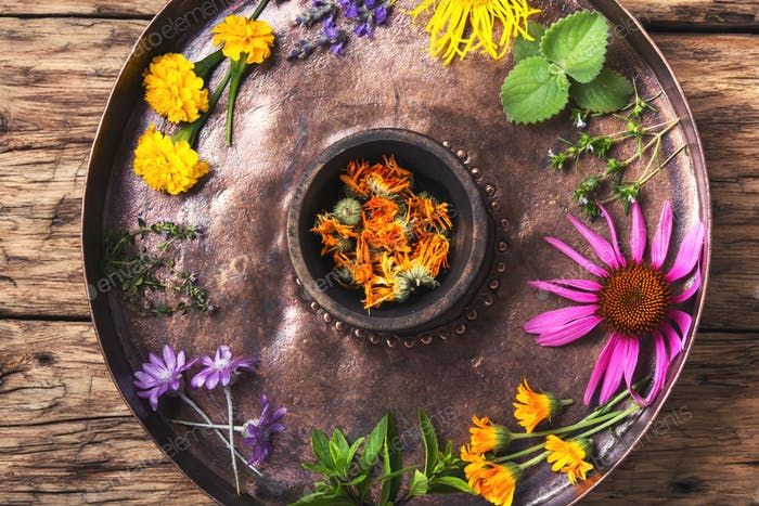 healthy herbs and flower