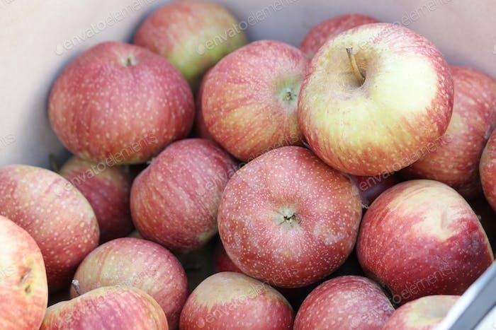 Market stall of fresh apples.