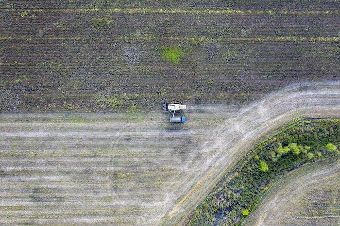 Landwirtschaftsszene