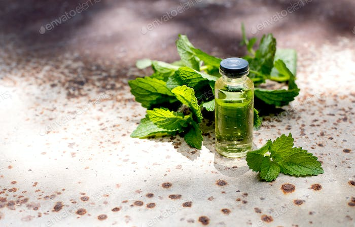 Natural Mint Essential Oil. Bottle of mint oil and fresh mint on a old metal background. Copy space.