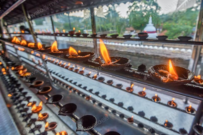Coconut oil lamps in temple