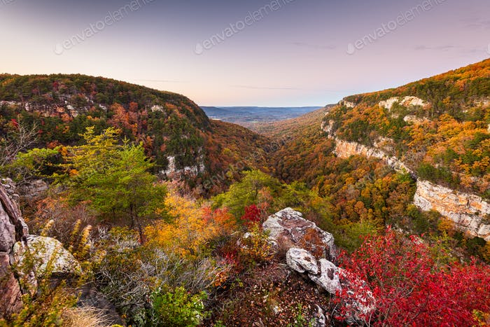 Cloudland Canyon, Georgia, USA