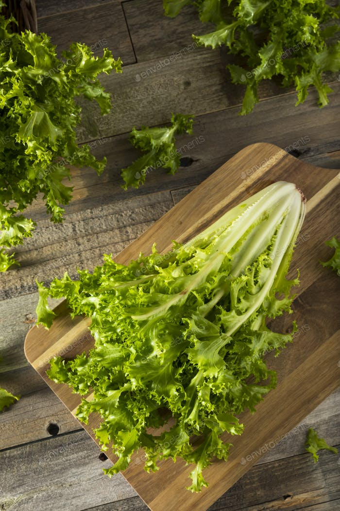 Raw Green Organic Endive Salad