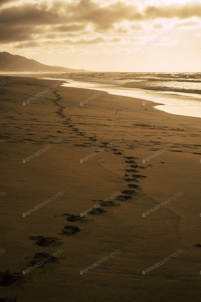 Awesome footprint and sun light beach side