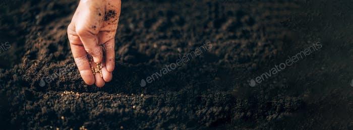 Hand wachsende Samen auf Aussaat Boden. Hintergrund mit Kopierbereich. Landwirtschaft, Bio-Gartenbau