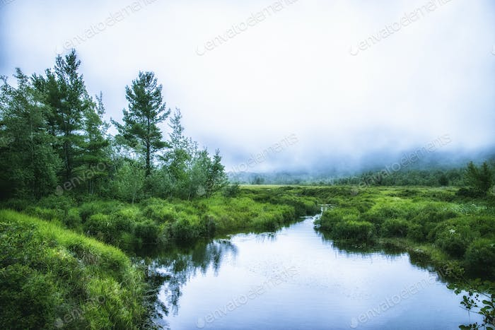 A waterway in the Acadia National Park in Maine. Low cloud and mist.