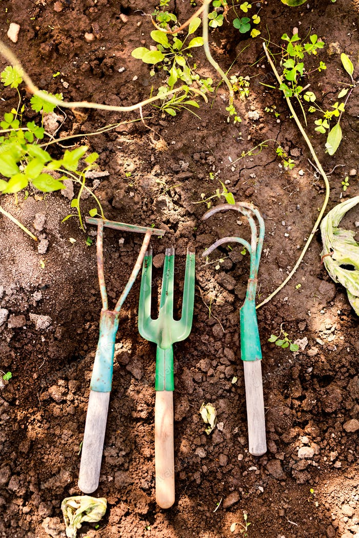 Zusammensetzung von Gartengeräten im Garten.
